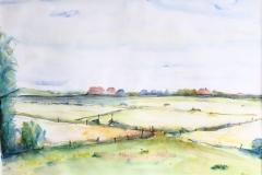 Texel - weiland, 53x37 cm