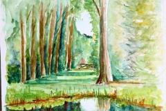 aquarel 's-Graveland